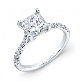 Princess Cut Micro Pave Engagement Ring
